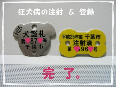 P1090678